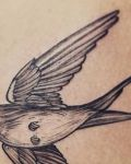 bambi_tattoo-on-move_tatouage_hirondelletattoo_hirondelle_swallowtattoo_swallow_firsttattoo_lineswork_blackwork_oiseaux_oiseauxtattoo_bird_birdtattoo
