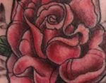 bambi_tattoo_102_tattoo-on-move_rose_color