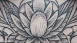 bambi_tattoo_89_tattoo-on-move_lotus_mandala_geometric_ornemental